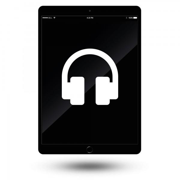 iPad Air 2 Kopfhöreranschluss Reparatur / Austausch