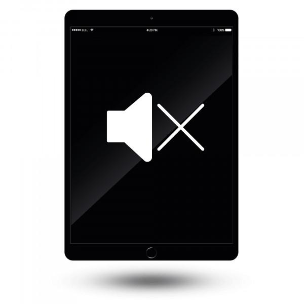 iPad mini Stummschalter Reparatur / Austausch
