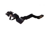 iPhone SE - Frontkamera / Frontmikrofon (Geräuschunterdrückung) / Lichtsensor / Annäherungssensor